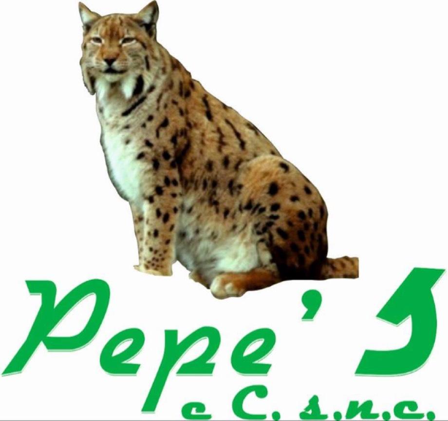 Profilo QR.Max Ricamificio Pepe's di Cazzamalli A. & C. S.N.C.